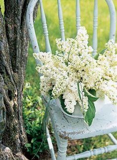 Lilacs: Spring's Favorite Perfume | Midwest Living