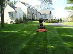 Awesome tip need read before buying a lawn mower