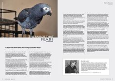 The Parrot that Fears PsittaScene excerpt Issue 28.1, Spring 2016 World Parrot Trust Publication