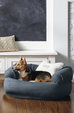 Our best-in-class Comfy Pet Couch is crafted as well as sofas designed for people. Ultra-plush, this pet couch offers unsurpassed support that ordinary dog beds can't match. Couch Pet Bed, Dog Beds, Couch Cushions, Dining Room Furniture, Furniture Ideas, Dog Design, Dog Art, Painted Furniture, Bean Bag Chair