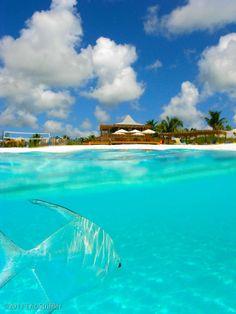 Club Med, Columbus Isle, Bahamas... photo by @Eric Striffler