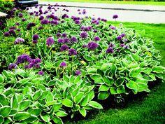Perennial Flower Garden Design Plans Picture Collection : How to design small perennial garden Backyard Garden Landscape, Small Backyard Gardens, Backyard Landscaping, Landscaping Ideas, Front Gardens, Gravel Garden, Large Backyard, Small Patio, Flower Bed Designs
