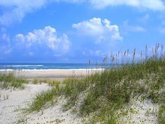 Hatteras Island, NC.  Doesn't get more perfect than this.