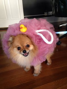 Poofie Loofah Puppy ~ complete with rubber duck!   via Fuzzy Today