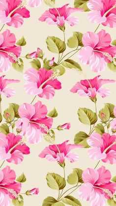 Screen wallpaper, wallpaper for your phone, cellphone wallpaper, pattern wa Pink Wallpaper Iphone, Cellphone Wallpaper, Flower Wallpaper, Screen Wallpaper, Pattern Wallpaper, Flower Backgrounds, Wallpaper Backgrounds, Tropical Flowers, Summer Flowers