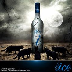 Full Moon IICE - Are we ready for it?  www.iice-vodka.com best vodka india