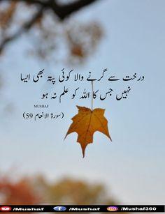 Quotes for Life. Beautiful Quran Quotes, Islamic Love Quotes, Islamic Inspirational Quotes, Islam Hadith, Allah Islam, Islam Quran, Ali Quotes, Urdu Quotes, Poetry Quotes
