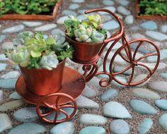 Fairy Gardening Tricycle Planter Georgetown,http://www.amazon.com/dp/B0080HTCA4/ref=cm_sw_r_pi_dp_QFJitb0XDSQV0VDK
