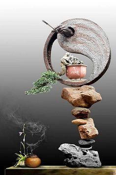 #art #bonsai art #盆栽(Via: jeongwhan oh )ほぉ...かっこいいな!