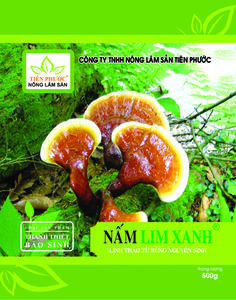 Benefits Of Medicinal Mushrooms: Shiitake, Maitake And Reishi. Linh Lan ·  Nấm Lim Xanh