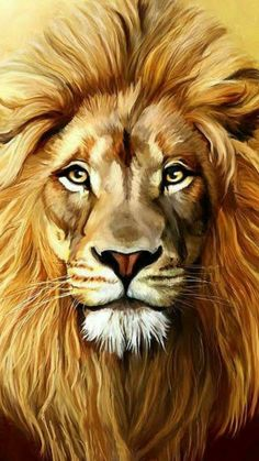 LION mighty king of animals # Lion Images, Lion Pictures, Animal Paintings, Animal Drawings, Art Drawings, Lion Painting, Sketch Painting, Lion Photography, Lion Drawing