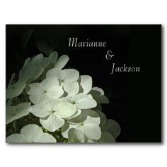 White Hydrangea Save the Date Postcard