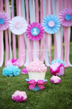 pink & blue girl 1st birthday cake smash portrait session. ribbon backdrop. paper fan banner. adorable!  © Alana Marie Imagery www.alanamarieimagery.com www.facebook.com/AlanaMarieImagery