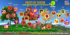 Buying produce in season cuts down your grocery bill. Check out what fruit to buy at what times of year.
