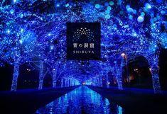 Ao no Dokutsu Shibuya Christmas Illumination Shimokitazawa, Tokyo Tour, Yoyogi Park, Holiday Dates, Shibuya Tokyo, To Do This Weekend, Weekender, Things To Do, Tours