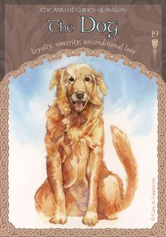 The best and most intuitive decks created by a master on Oracle Cards, Colette studied many ancient divination systems to create these super accurate decks.