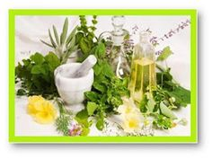 weight loss herb, natural herbal remedies and products that work. Herbal products are what are natural and you can very well take help of those herbs for weight decline. Holistic Remedies, Natural Home Remedies, Herbal Remedies, Health Remedies, Healing Herbs, Medicinal Plants, Natural Herbs, Natural Healing, Natural Medicine