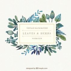 Watercolor Leaves And Herbs Background Free Vector Idees