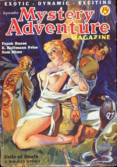 Image result for pulp cover mystery adventures