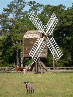 The Island Farm, Manteo - living history, daily activities; near NC Aquarium, Fort Raleigh, Roanoke Island Festival Park and Manteo Waterfront