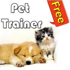 Pet Trainer, Training Your Dog, Behavior, Your Pet, Trainers, Dog Cat, Corgi, Groom, Apps