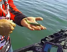 In this video, bass pro Greg Hackney discusses the basics of fishing soft jerkbaits (fluke-style baits) in a variety of situations focusing on Strike King's Caffeine Shad… (He is sponso…