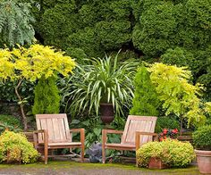 This isn't even an actual patio, but plants in containers creating a focal point.  Use a Plant's Texture