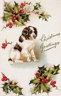 Vintage Springer Spaniel Christmas Card