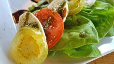aliments-ant-transpiration
