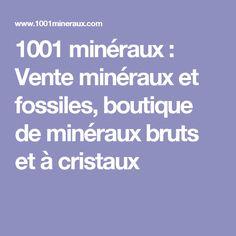 1001 minéraux : Vente minéraux et fossiles, boutique de minéraux bruts et à cristaux