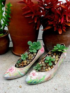 That's one way to recycle your shoes. Plants In Bottles, Whatsoever Things Are Lovely, Cement Garden, Ikebana Flower Arrangement, Bottle Garden, Planting Succulents, Succulent Planters, Yard Art, Garden Projects
