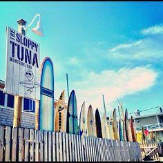 New York, Long Island, The Hamptons, Montauk, The Sloppy Tuna