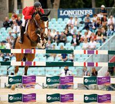 Beautiful colours of the jump and the horse. Check out that wall eye!