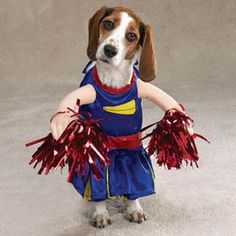 Funny Pet Costume - Cheerleader Halloween Costume for Dogs ♡... Re-pin by StoneArtUSA.com ~ affordable custom pet memorials for everyone.