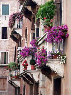 Venice in the spring