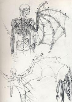 """fer1972: """" Vampire Anatomy by Daniel Govar (Artist on tumblr) """""""