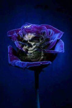 Pen and Ink Cross Hatching Masters Edition - Drawing On Demand Dark Fantasy Art, Dark Art, Tattoo Studio, Skull Rose Tattoos, Grim Reaper Art, Arte Dope, Badass Skulls, Skull Pictures, Skull Artwork