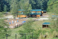 stable secrets, well laid out barn, turnout, arenas, small barns, run in sheds