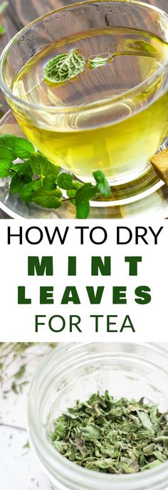 DIRECTIONS on How to Dry Mint Leaves for Tea! These DIY instructions shows how easy it is to dry your mint plant so you can make your own homemade mint tea. I store this dried mint tea for months so I can enjoy the health benefits year round! - Red Tea Is Mint Recipes, Tea Recipes, Detox Recipes, Drying Mint Leaves, Tim Tim, Do It Yourself Food, Mint Plants, Homemade Tea, Fruit Water