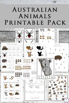 Australian Animals Printable Pack This Australia Animals Printable Pack is aimed at children in preschool and kindergarten; filled with fun literacy and math activities with an Australian Animal Theme. Australia For Kids, Australia School, Australia Crafts, Australia Animals, Australia Day Craft Preschool, Brisbane Australia, Western Australia, Animal Worksheets, Animal Activities