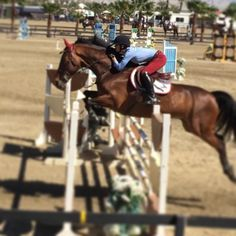ON HORSE NATION >> Watch Kaley Cuoco Jump This Giant Gymnastic Like a Boss