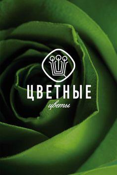 Разработка логотипа цветные цветы, Colored flowers logо.