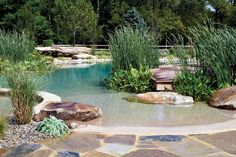 I need a pool like this! It looks so calm and relaxing!