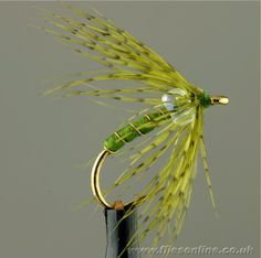 Partridge and Pearl - Olive. For white river, tie slimmer with greener color for a caddis emerger. Or black or red with silver - basically a midge softhackle. Size 16 and Also try black bead. Trout Fishing Tips, Fishing 101, Pike Fishing, Fishing Lures, Fly Fishing, Fishing Stuff, Fishing Gifts, Nymph Fly Patterns, Fly Tying Patterns