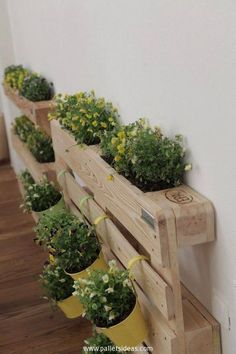 These wooden pallet planters are made using the freshest wood pallets that were probably yet to be used, but we have turned them here into these awesome pallet planters. We can see additional plant cups hanging from the pallet planters and the gaps inside are again filled with different plants.