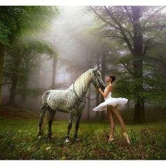 #балет #ballet #balletdancer #ballerinaproject #ballerina #horse #wood by dasha_nikonchuk