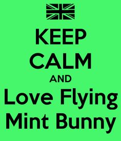 England Hetalia Flying Mint Bunny