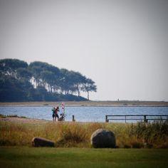 Assens Næs med skønne Torø i baggrunden #visitfyn #fyn #nature #visitdenmark #næs #nofilter #natur #denmark #danmark #dänemark #landscape #nofilter #assens #mitassens #vildmedfyn #fynerfin #vielskernaturen #mtb #visitassens #instapic #picoftheday #sea #beach #strand #strandliv