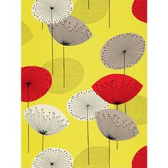 Buy Sanderson Dandelion Clocks Wallpaper, Yellow / Red, 210239 Online at johnlewis.com