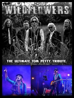"""BIG SHOW!!! DO NOT MISS THIS!!! NOVEMBER 18, 2017!!  """"REMEMBERING TOM PETTY""""  In honor of the late great Florida Native.. Tom Petty.. Whiskey Joe's Bar and Grill Tampa moved some shows around and we secured The Wildflowers!! An amazing Tom Petty Tribute show on a tour stop Nov 18th to play on the big beach stage! It will be just like seeing him in his prime, nothing but huge hits 9pm-11pm. #rangloo, #bar, #accessories"""